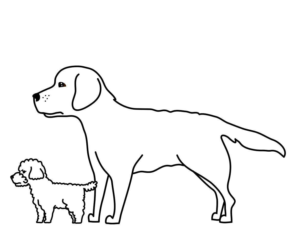 MB-066電剪任何犬種都適用